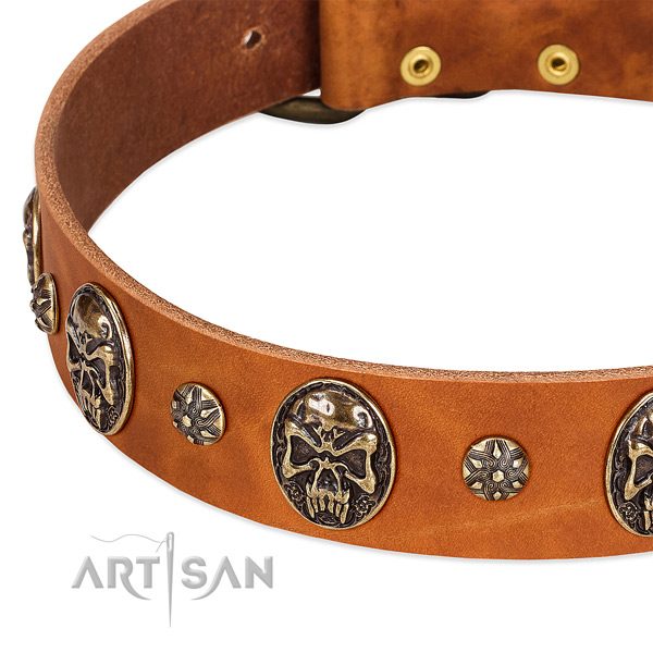 Rust-proof embellishments on full grain leather dog collar for your canine
