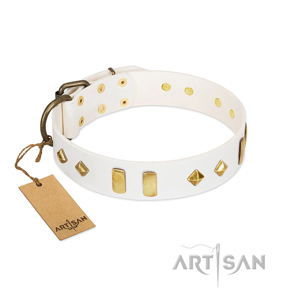Everyday use high quality full grain genuine leather dog collar with embellishments