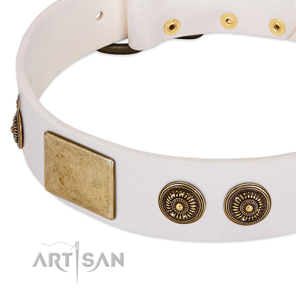 Adorned dog collar made for your beautiful four-legged friend