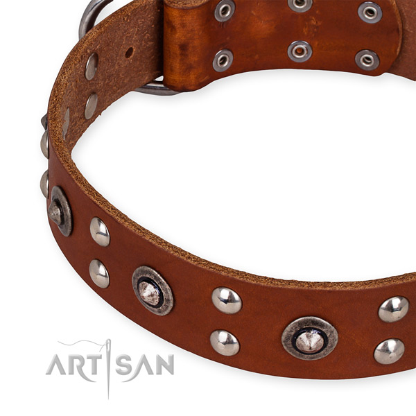 Full grain leather collar with rust-proof traditional buckle for your beautiful canine