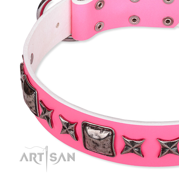 Daily use adorned dog collar of reliable full grain genuine leather