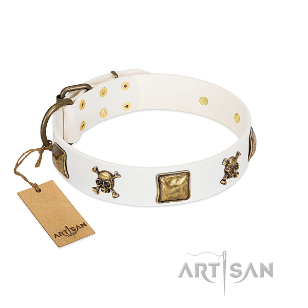 Inimitable genuine leather dog collar with strong embellishments