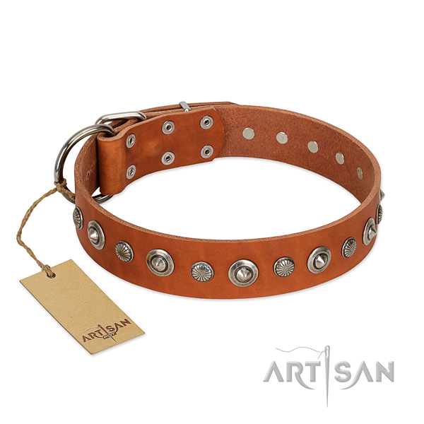 Top notch leather dog collar with unusual decorations