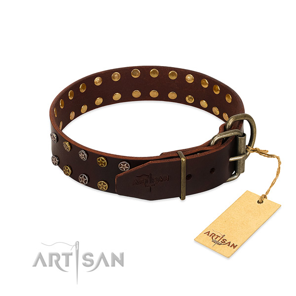Stylish walking genuine leather dog collar with top notch embellishments