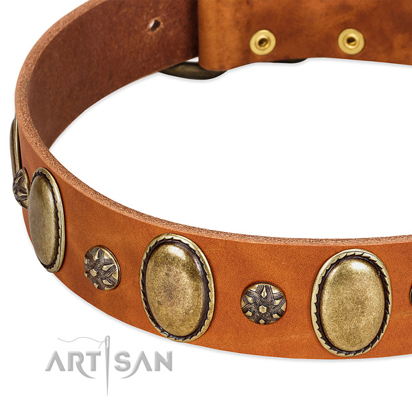 Stylish walking soft to touch genuine leather dog collar