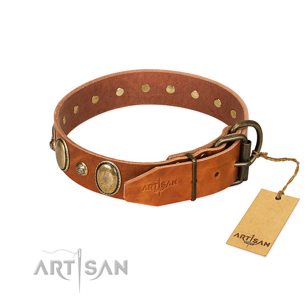 Unique full grain leather dog collar with strong buckle