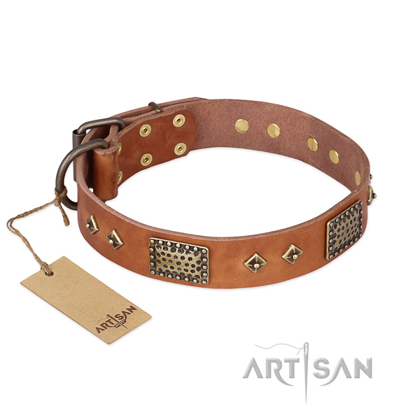Trendy full grain leather dog collar for stylish walking