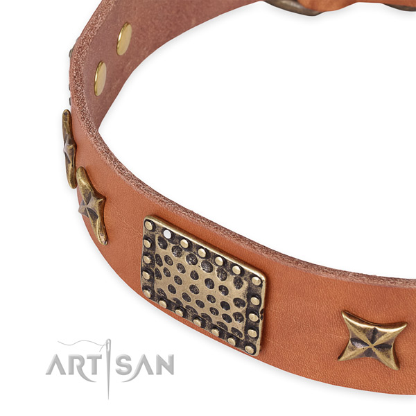 Full grain leather collar with rust resistant D-ring for your lovely canine