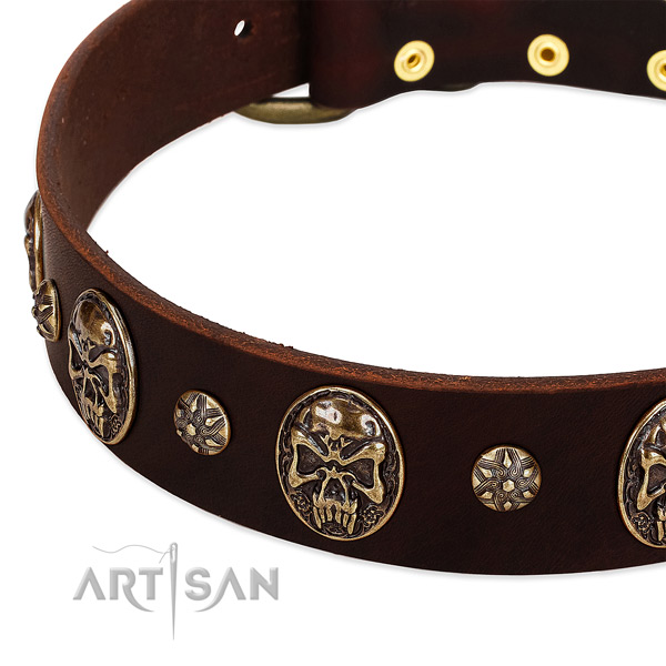 Corrosion resistant decorations on full grain genuine leather dog collar for your pet