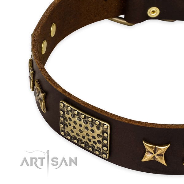 Full grain natural leather collar with strong hardware for your stylish canine