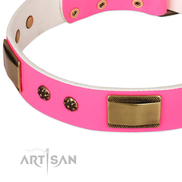 Strong embellishments on leather dog collar for your four-legged friend