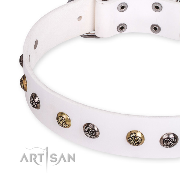 Genuine leather dog collar with fashionable durable embellishments