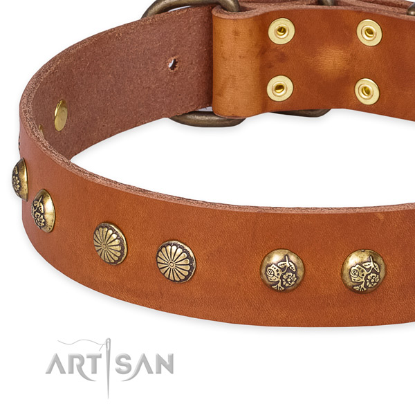 Full grain natural leather collar with reliable buckle for your stylish pet
