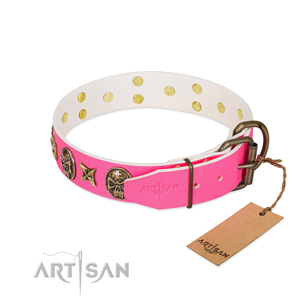 Reliable traditional buckle on genuine leather collar for everyday walking your dog