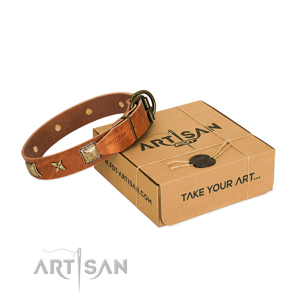 Stunning leather collar for your impressive pet