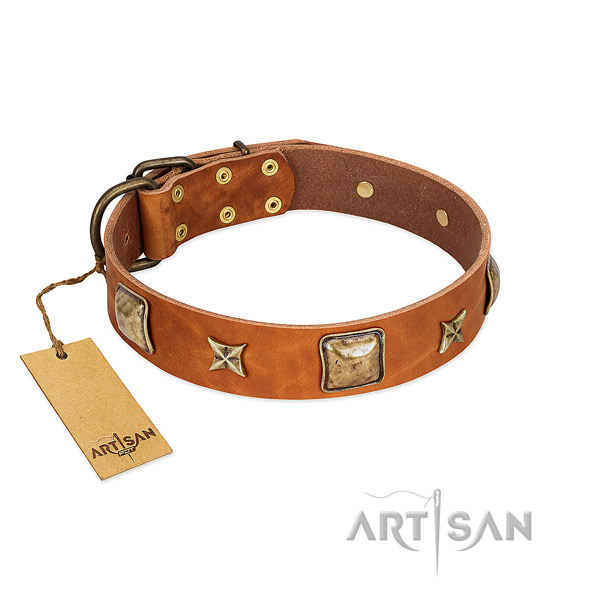 Easy wearing full grain leather collar for your canine