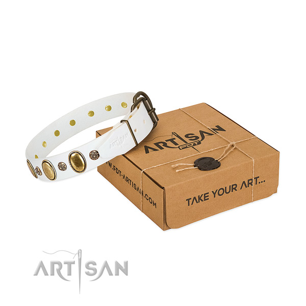 Everyday use soft genuine leather dog collar with studs