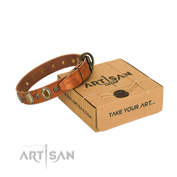 Comfortable wearing best quality full grain genuine leather dog collar with adornments