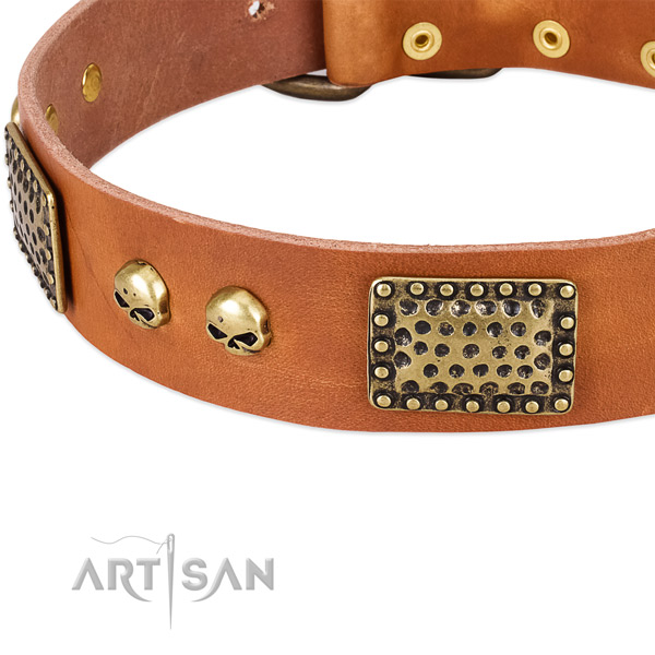 Rust resistant hardware on full grain leather dog collar for your dog