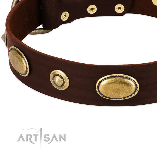 Durable adornments on natural leather dog collar for your canine