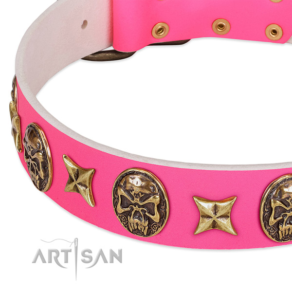 Leather dog collar with unusual embellishments