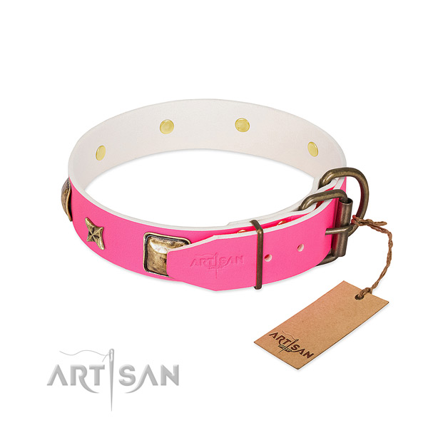 Rust resistant traditional buckle on leather collar for stylish walking your dog