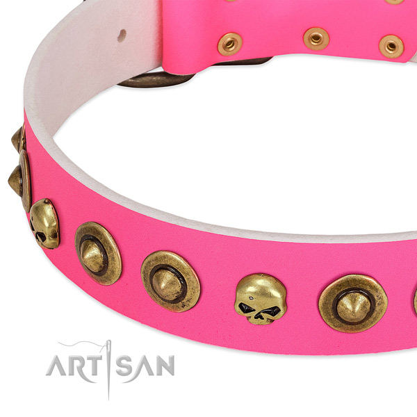 Fashionable studs on full grain leather collar for your dog