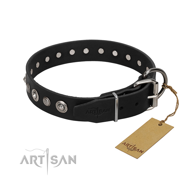 Top notch genuine leather dog collar with inimitable decorations
