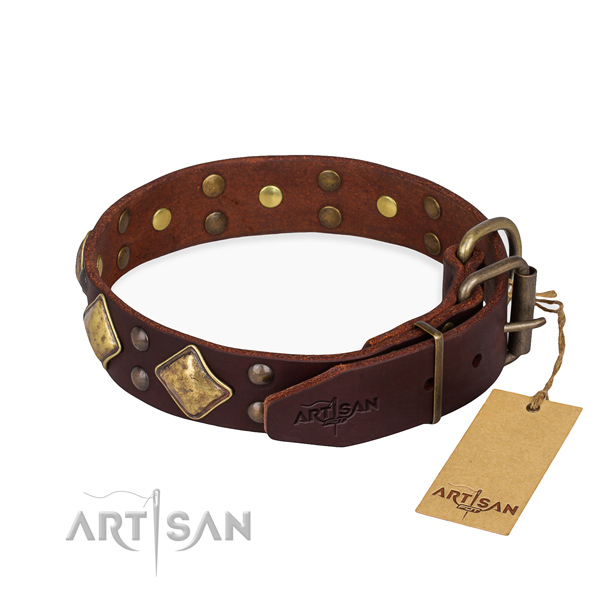 Full grain natural leather dog collar with stylish corrosion proof adornments