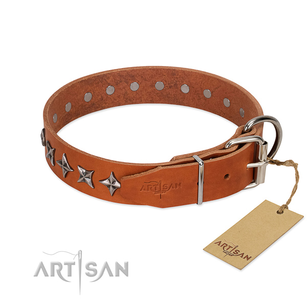 Comfortable wearing adorned dog collar of high quality full grain leather