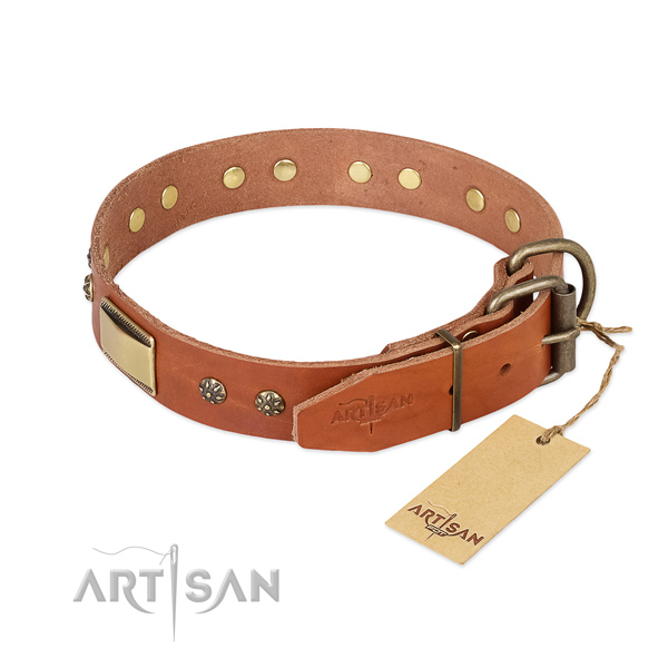 Full grain natural leather dog collar with strong traditional buckle and adornments