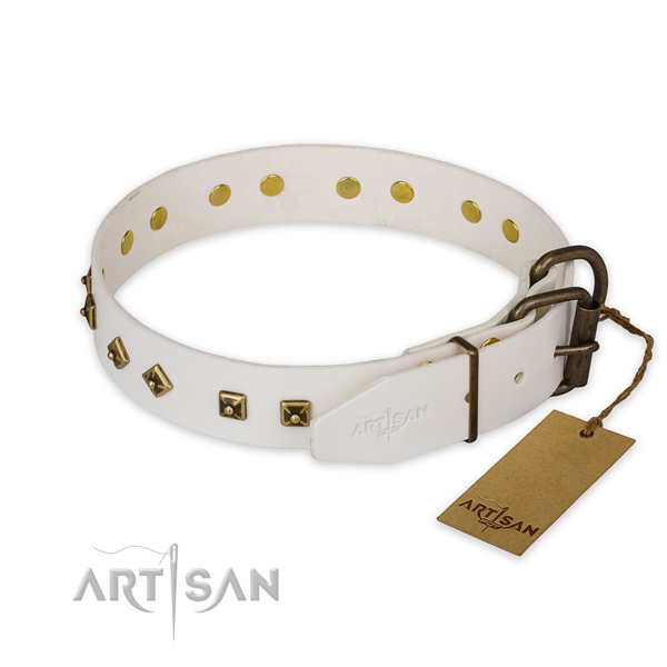 Rust-proof buckle on genuine leather collar for everyday walking your pet