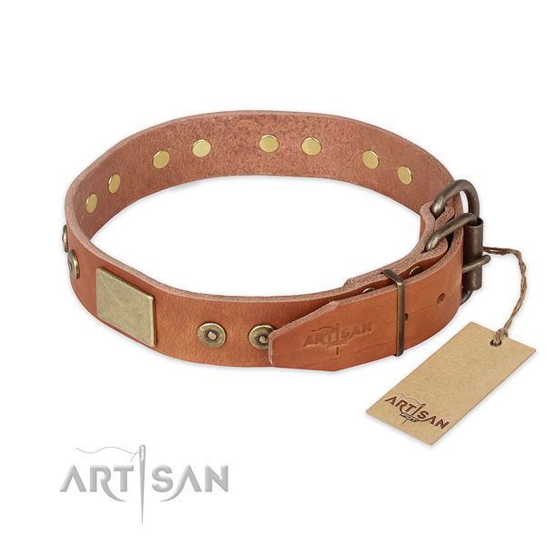 Durable traditional buckle on natural genuine leather collar for daily walking your canine