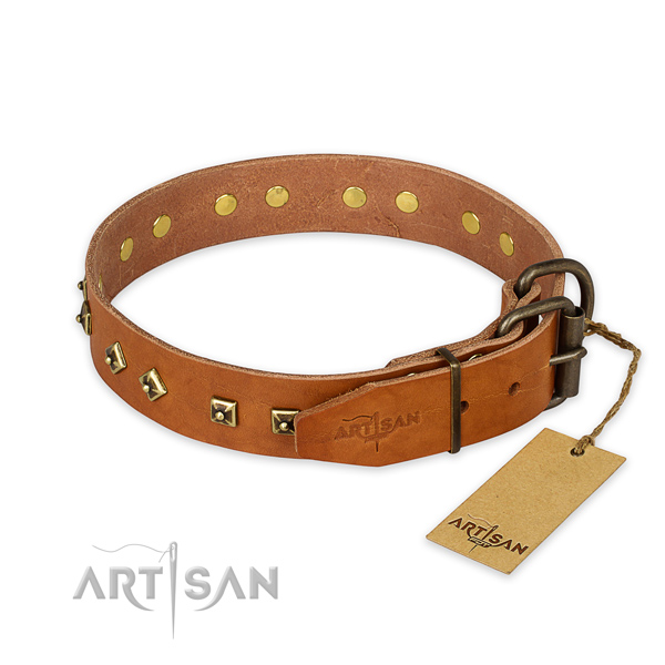 Corrosion proof buckle on full grain natural leather collar for stylish walking your four-legged friend