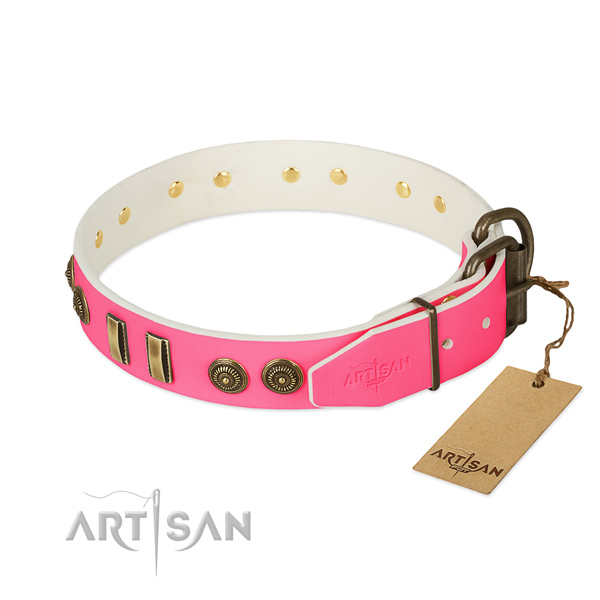 Reliable decorations on full grain natural leather dog collar for your canine