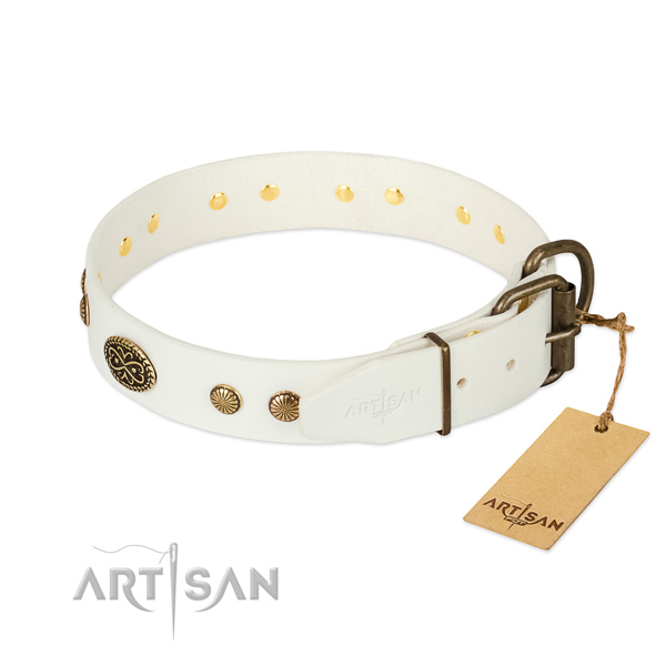 Corrosion resistant D-ring on natural leather dog collar for your four-legged friend