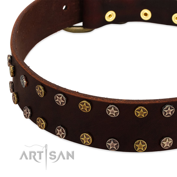 Handy use full grain natural leather dog collar with amazing embellishments