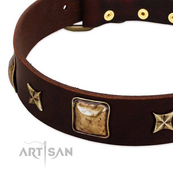 Corrosion resistant hardware on natural genuine leather dog collar for your canine
