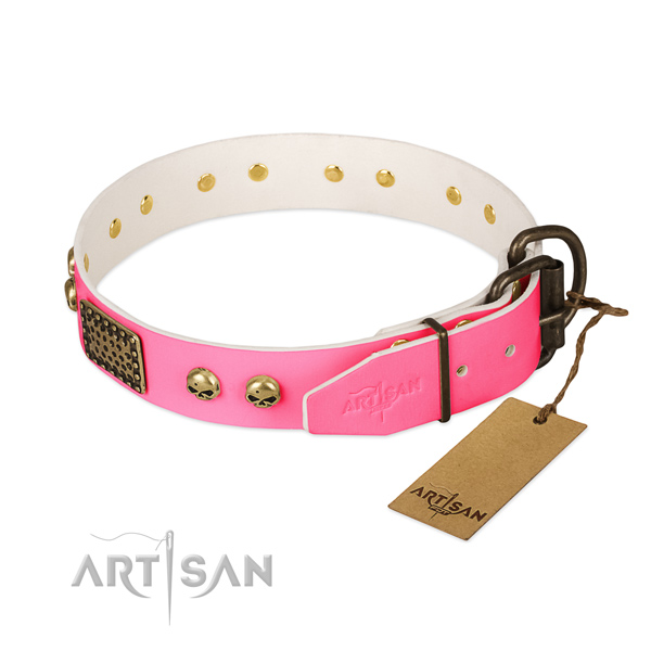 Rust-proof traditional buckle on easy wearing dog collar
