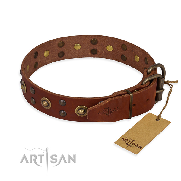 Rust resistant buckle on leather collar for your beautiful canine