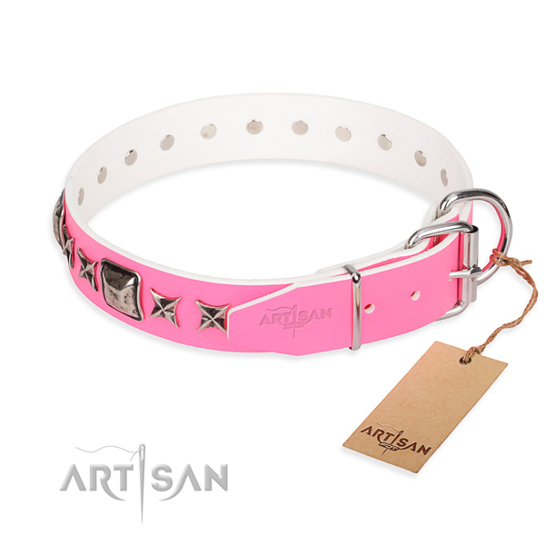 Reliable decorated dog collar of natural leather
