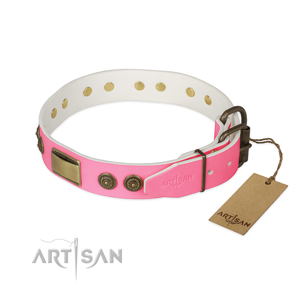 Rust-proof decorations on everyday walking dog collar