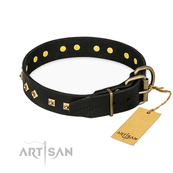 Rust-proof traditional buckle on leather collar for walking your canine