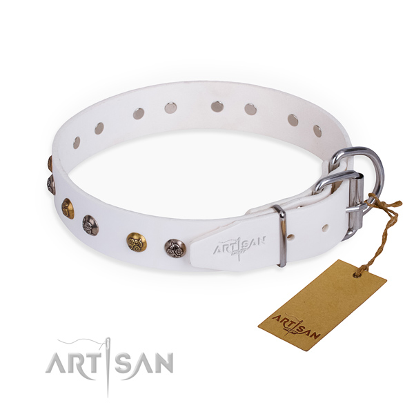 Full grain natural leather dog collar with trendy reliable studs