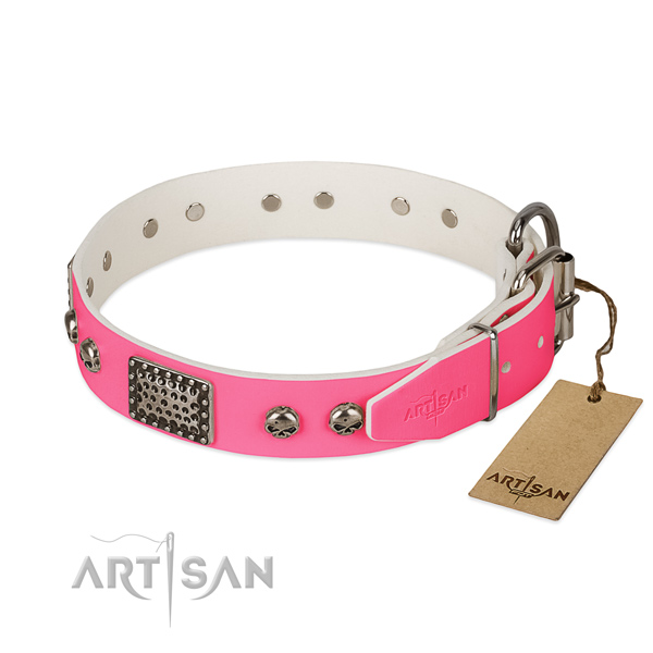 Corrosion proof studs on basic training dog collar