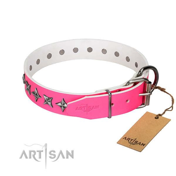 Best quality leather dog collar with amazing embellishments