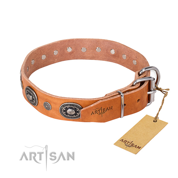 High quality leather dog collar created for walking