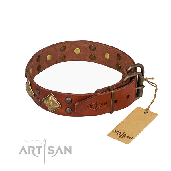 Genuine leather dog collar with amazing corrosion proof adornments
