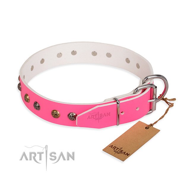 Full grain leather dog collar with stylish rust resistant decorations