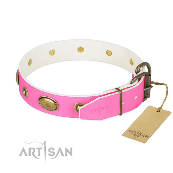 Corrosion resistant traditional buckle on full grain leather dog collar for your canine